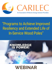 Programs to Achieve Improved Resiliency and Extended Life of In-Service Wood Poles